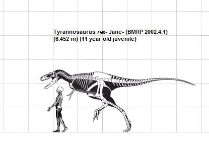 Вымер ли трилобит и какими были динозавры? SKUNK69
