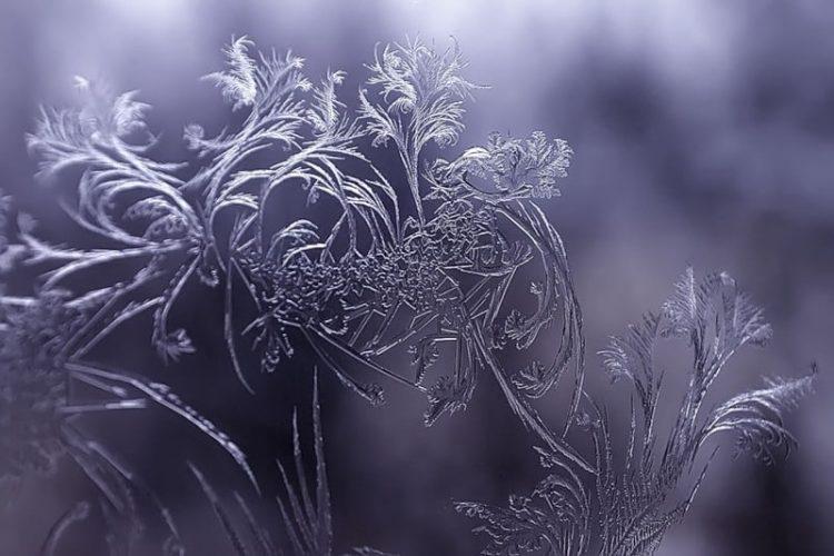 Окно морозным утром