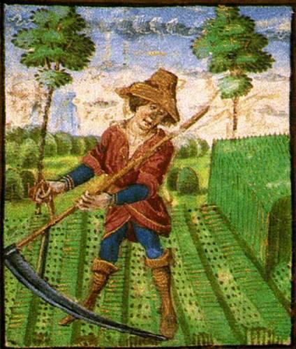 Сенокос в XV веке. Рисунок из Радзвиловской летописи.