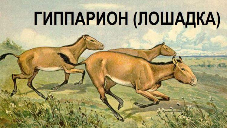 Три сажени поверх Тмутаракани kadykchanskiy